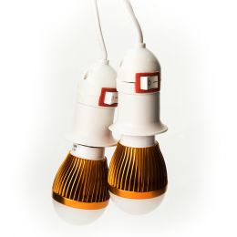 Led Bulb 12volt with Clamps